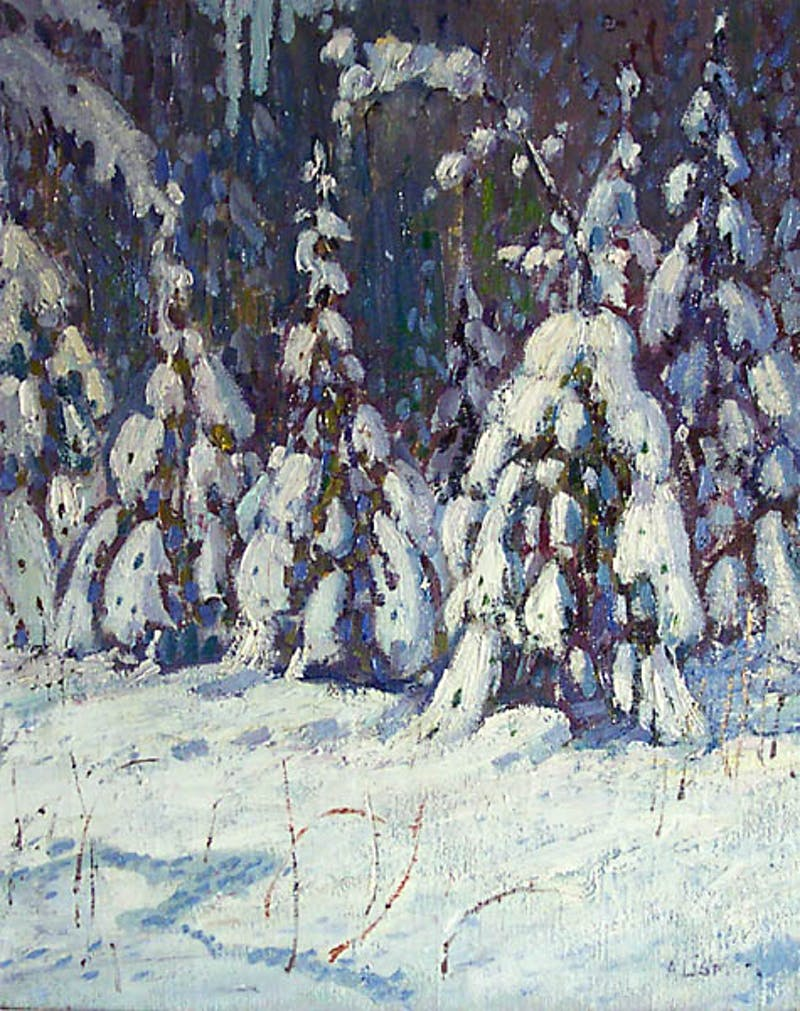 Forest in Winter Image 1