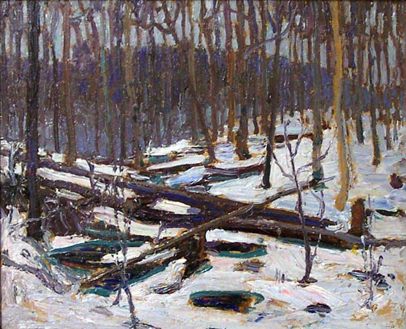 Winter, Algonquin Park