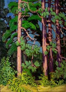 Trees, Algonquin Park