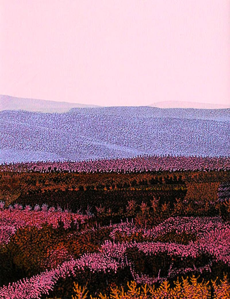 Rose Meadow Image 1