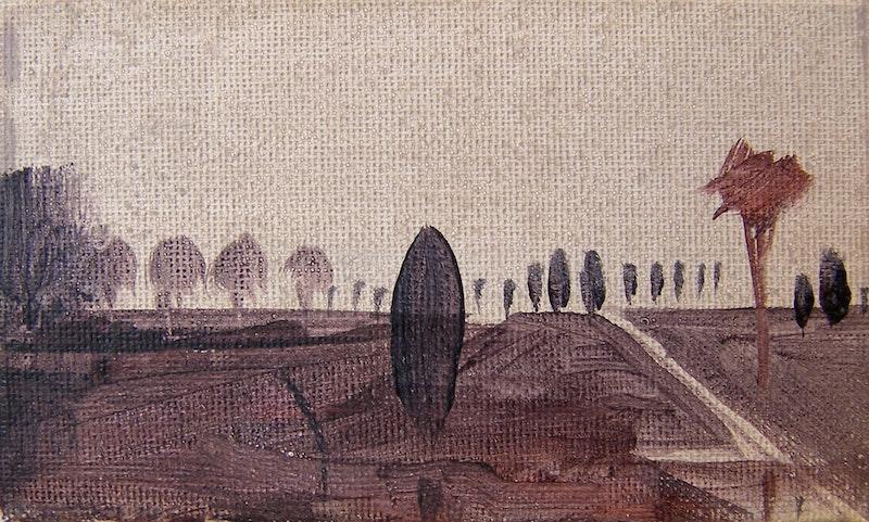 Sightline Note - Tree Image 1