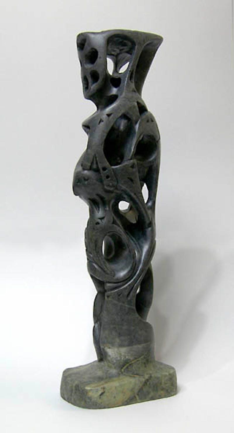 Sentinel Image 1