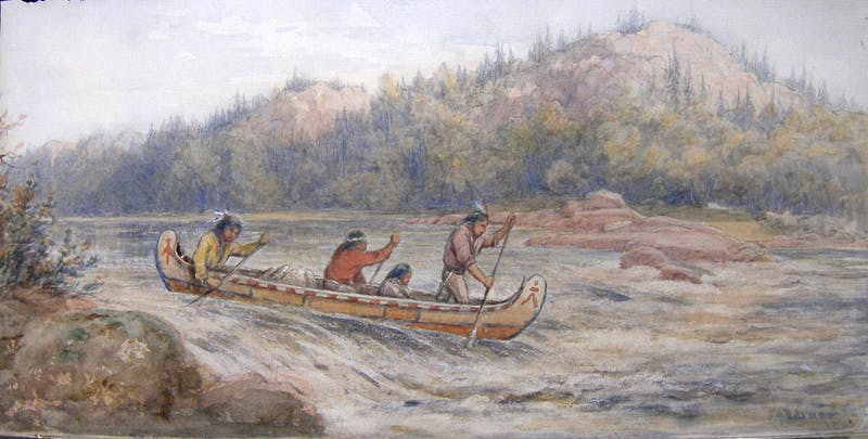 Croping the Rapids Image 1