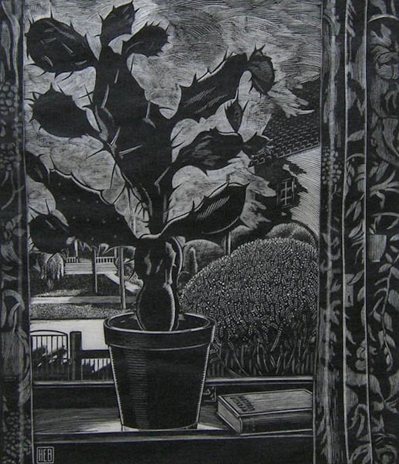 Untitled Still Life - Cactus 16/100
