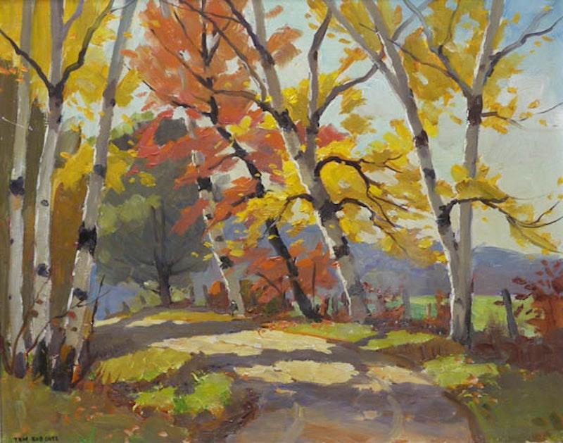 Autumn Sunshine Image 1