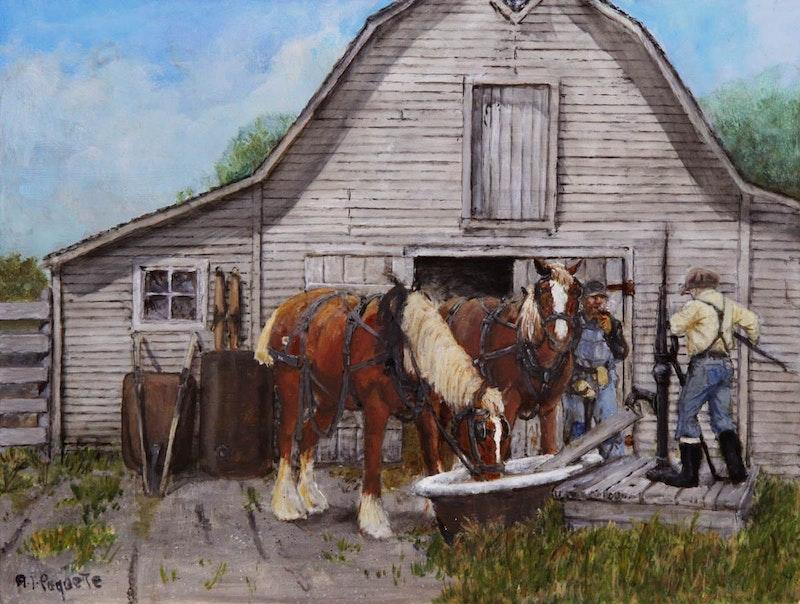 Fergusons Show Horses - Arden, Manitoba