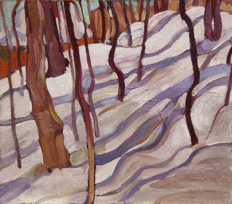 Trees and Snow Shadows Image 1