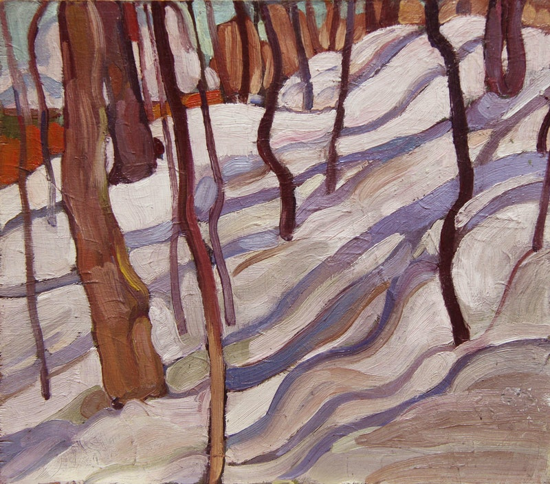 Trees and Snow Shadows