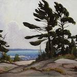 Wind Blown Pine, Georgian Bay by Frank Panabaker, 1950 oil - (20x24 in)