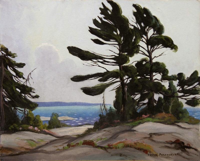Wind Blown Pine, Georgian Bay Image 1