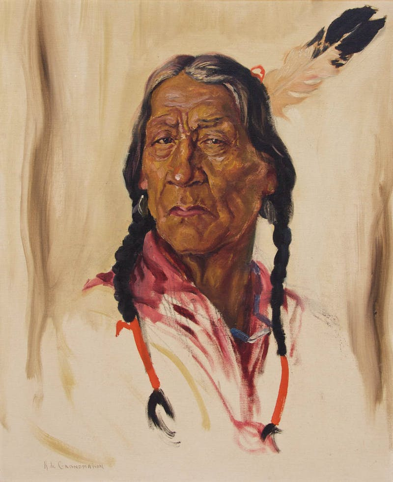Chief Pat Grasshopper Sarcees Image 1