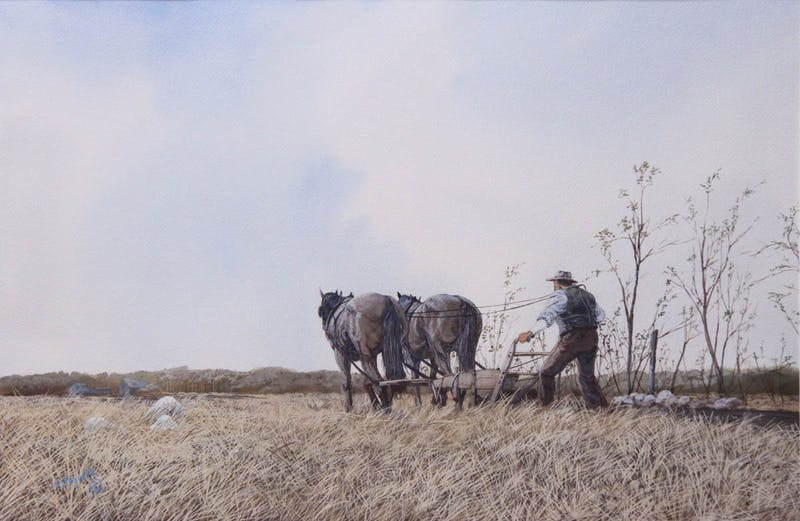 Horses Plowing Image 1