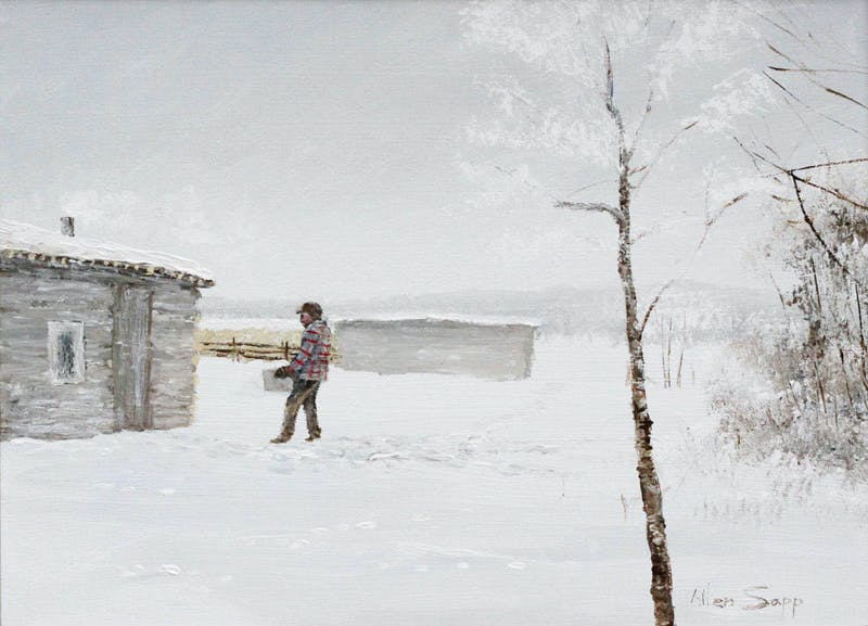 Taking Snow into the House