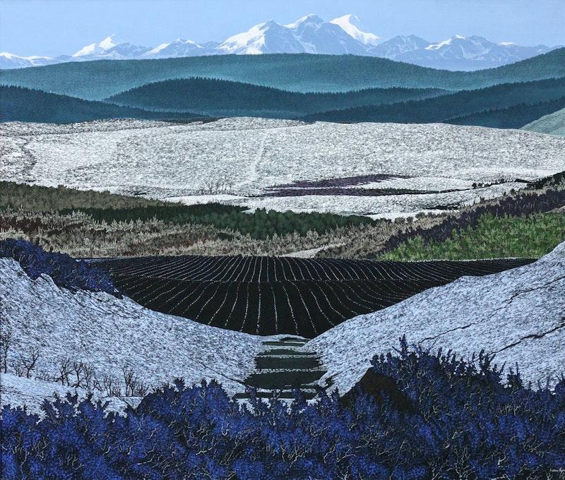 Black Mountain Field