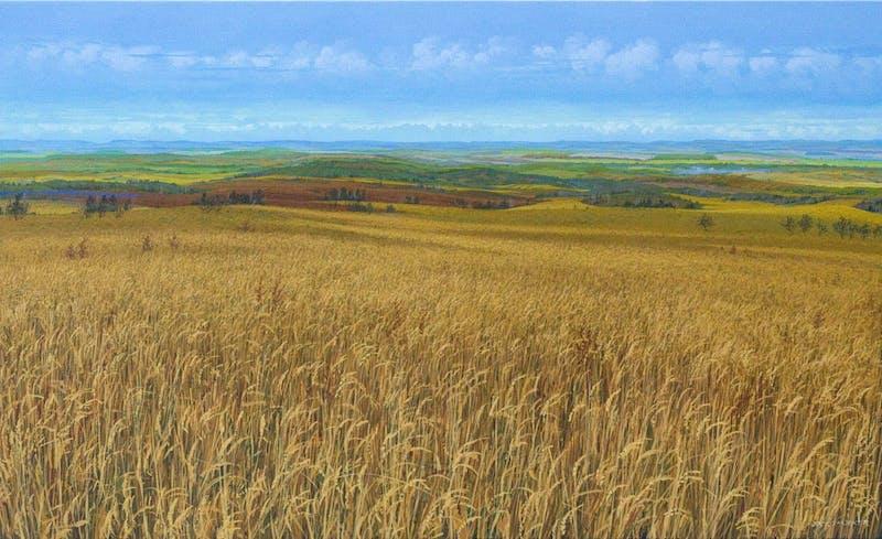 Canadian Wheat Image 1