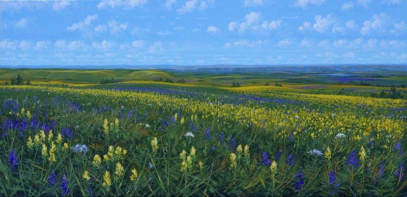 A Prairie Day Image 1