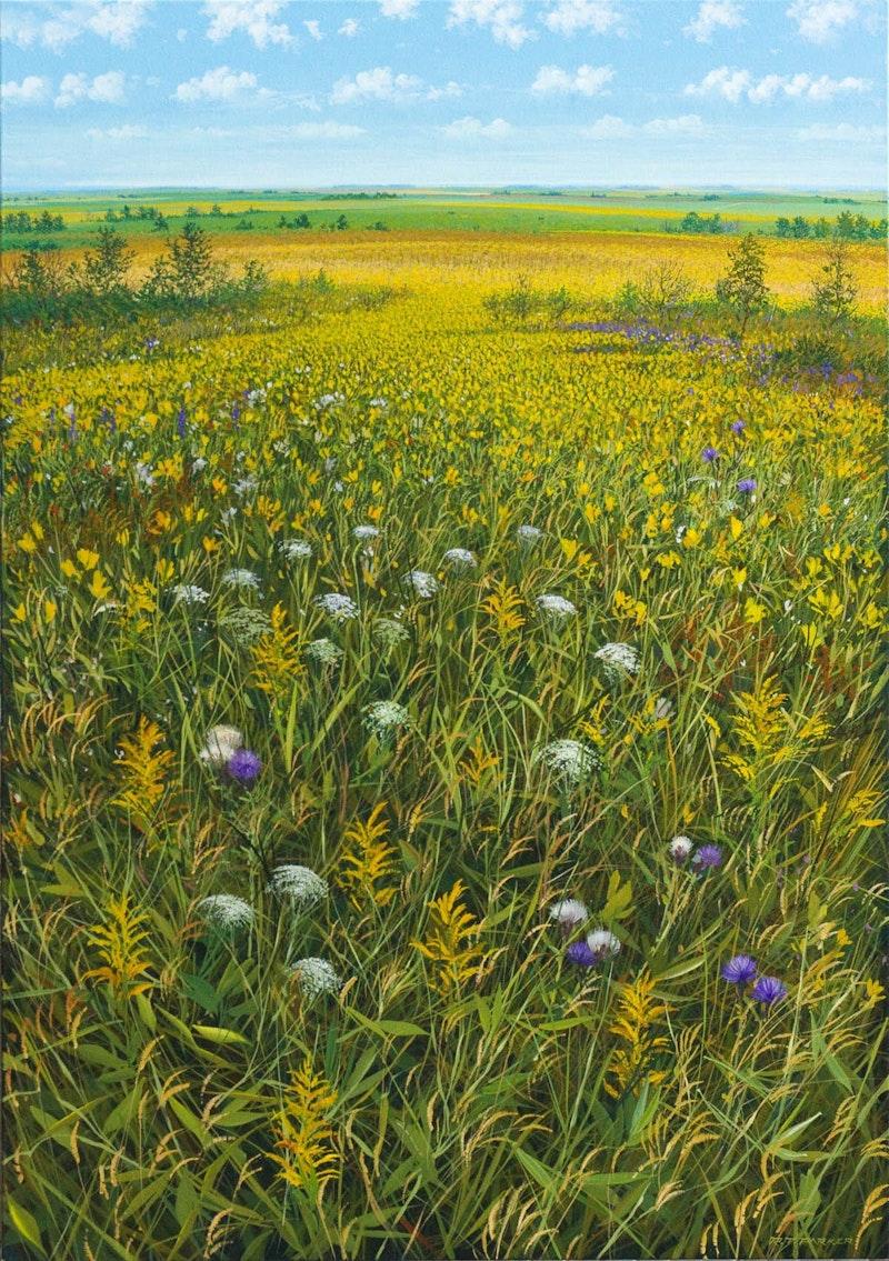 Prairie Near and Far Image 1