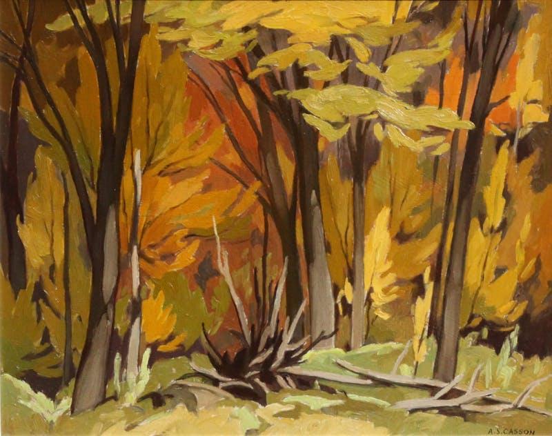 Woodland, October 1962 Image 1
