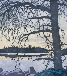 Jack Pine Against Dawn Sky