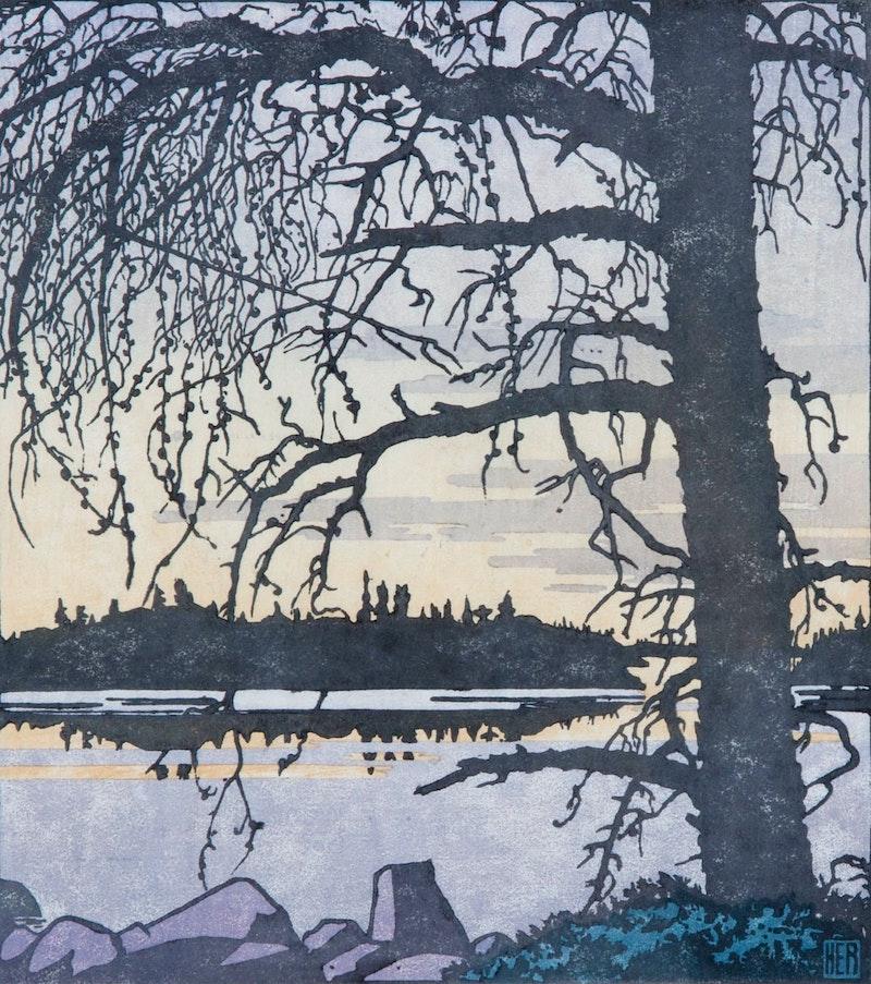 Jack Pine Against Dawn Sky Image 1