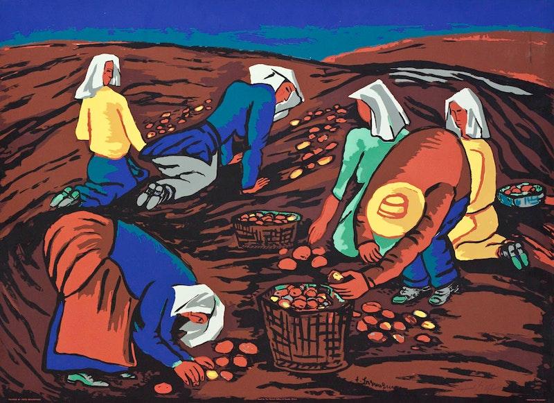 Potato Pickers Image 1