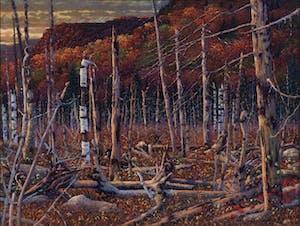 Untitled Fall Landscape