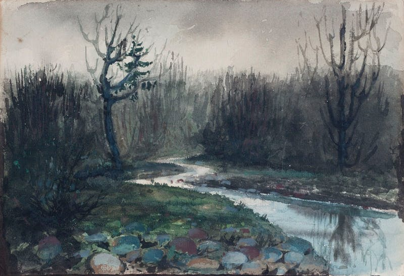 Stream in a Marsh