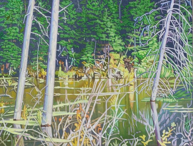 Beaver Pond, McHugh Lake