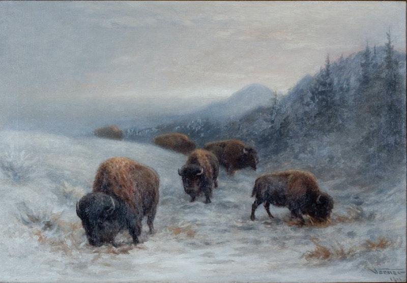 Winter Grazing Image 2