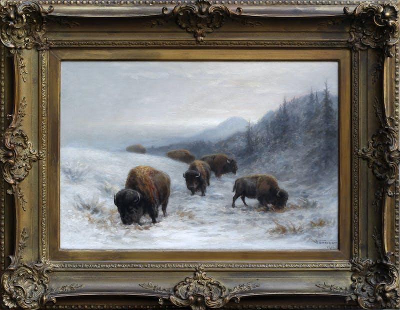 Winter Grazing Image 1
