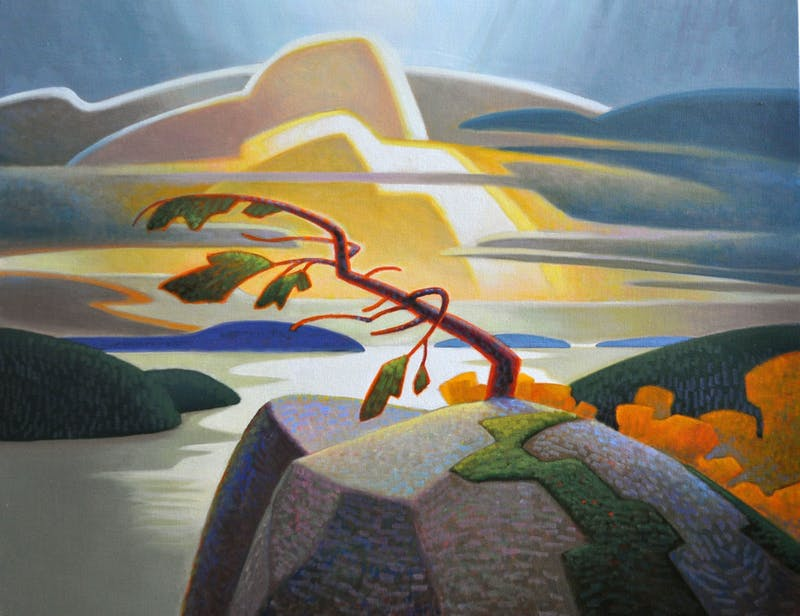 Windswept Pine Image 1