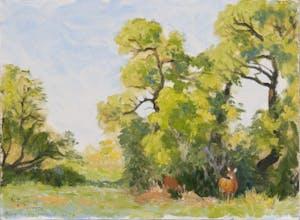 Creekside Grove