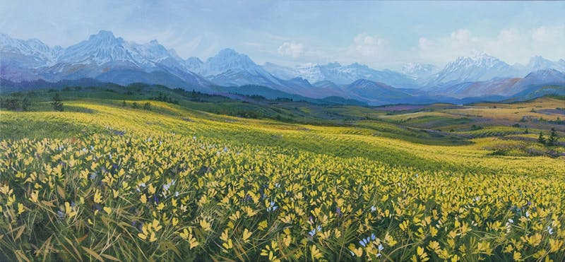 Rocky Mountain Plethora Image 1