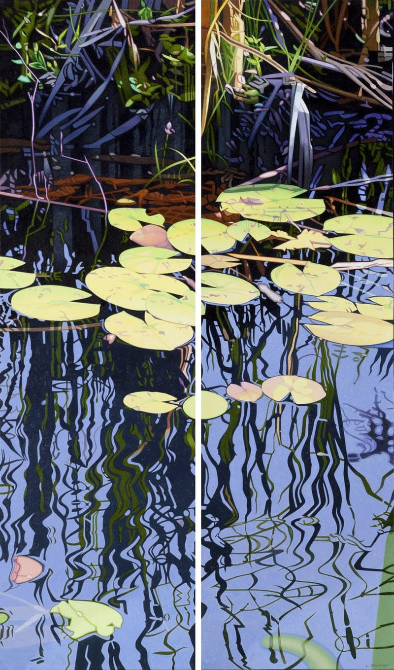 Lily Pond Reflections Image 1