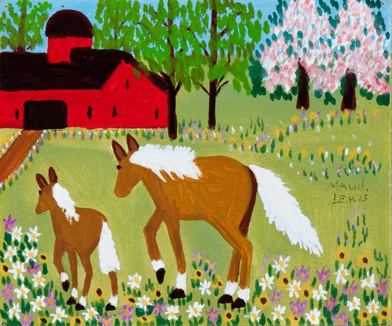 Mare and Foal in Spring Meadow Image 2