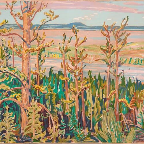 Jack Pine by Alexander Young Jackson, 1950 Sampson-Matthews Silkscreen - (30x40 in)