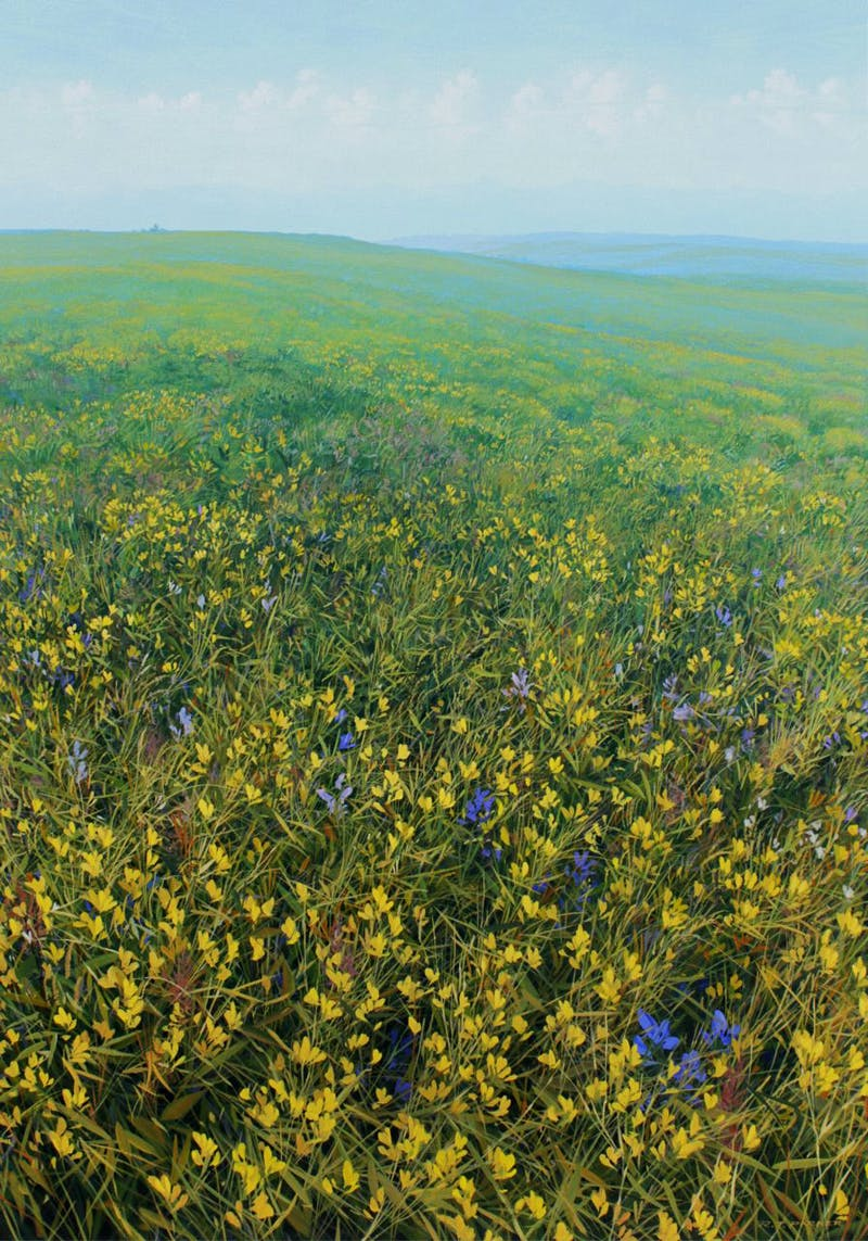 Twin Butte Prairie Land Image 2