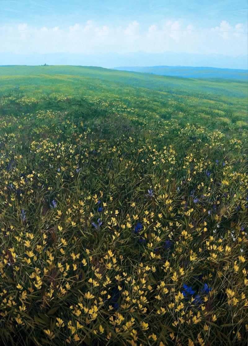 Twin Butte Prairie Land