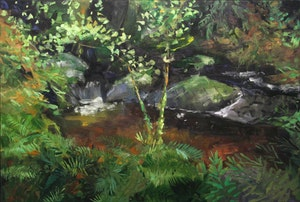Untitled (Pond with Rocks)