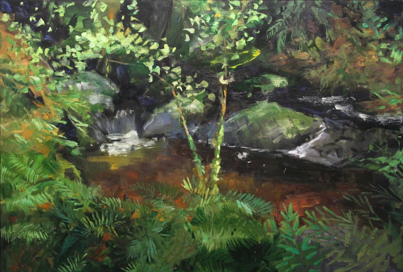 Untitled (Pond with Rocks) Image 1
