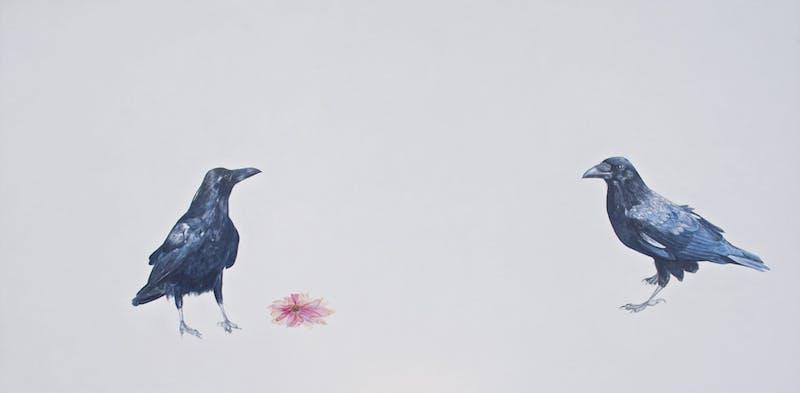 Echinacea Image 1