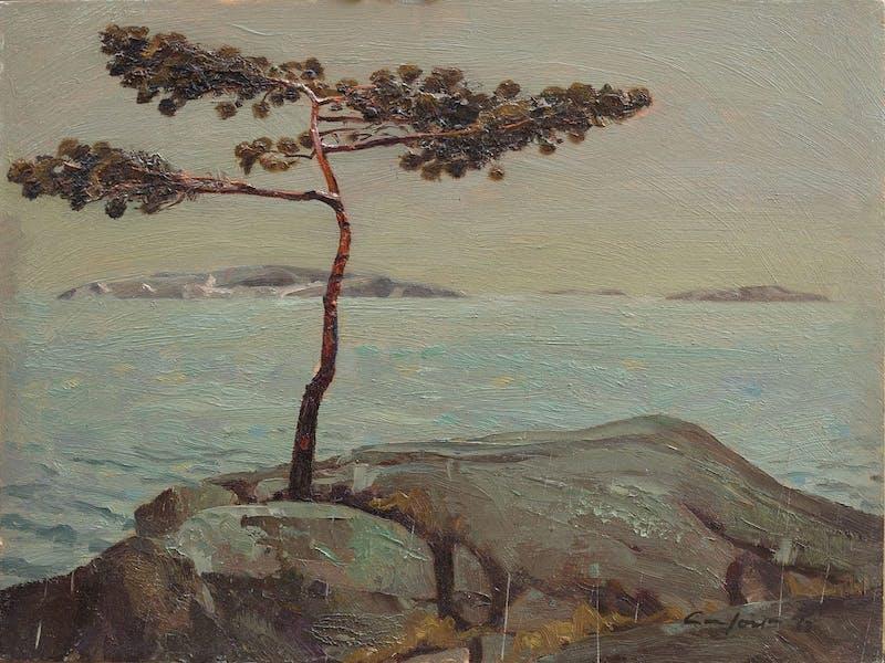 A.Y.'s Tree, Georgian Bay Image 1