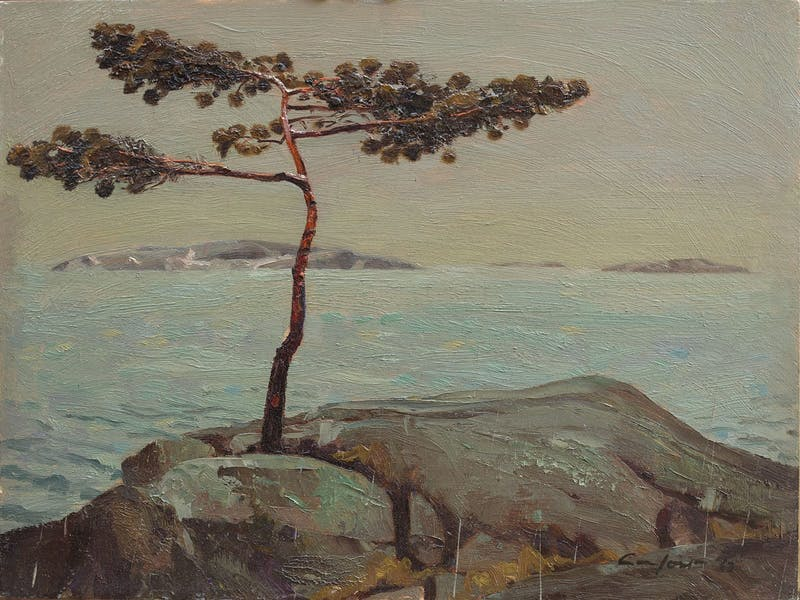 A.Y.'s Tree, Georgian Bay