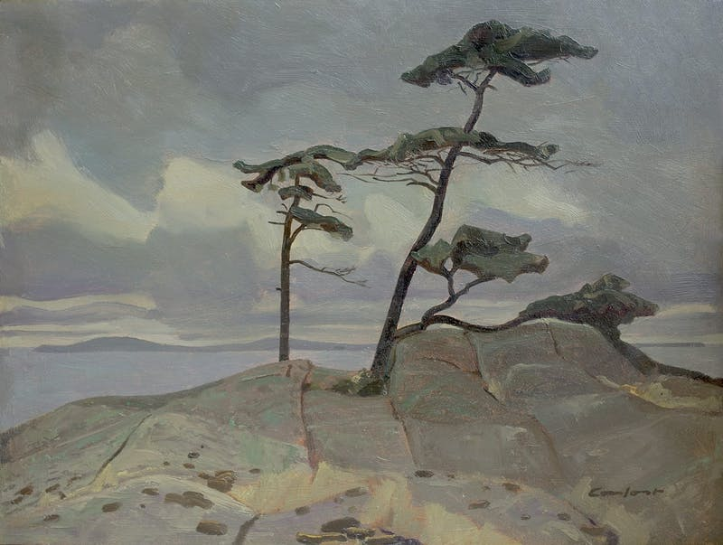 Pines, North Point, Midway Island, IV