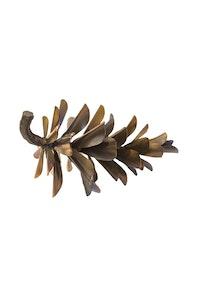 Pine Cone #17-247