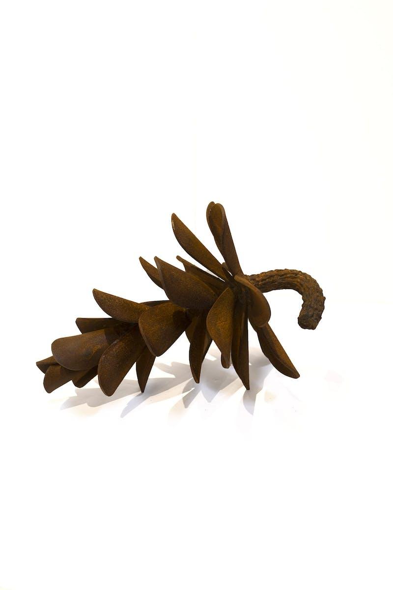 Pine Cone #17-248 Image 1