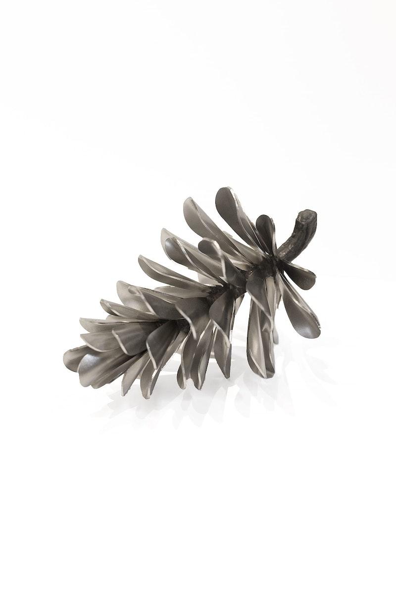 Pine Cone #17-235 Image 1