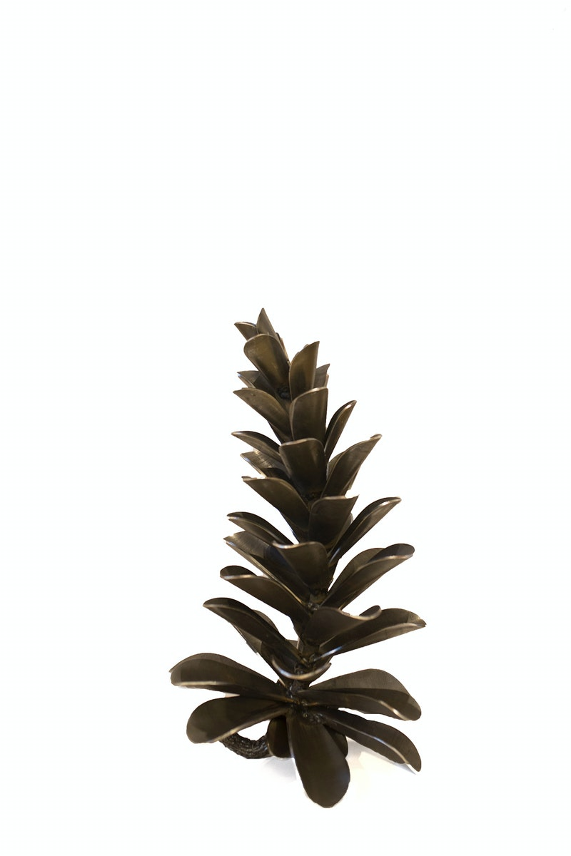 Pine Cone #17-327 Image 2