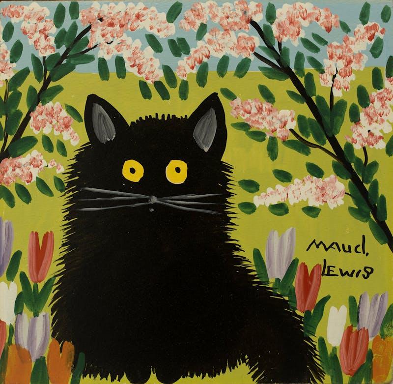 One Black Cat Image 1