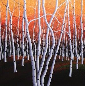 Evening Birches